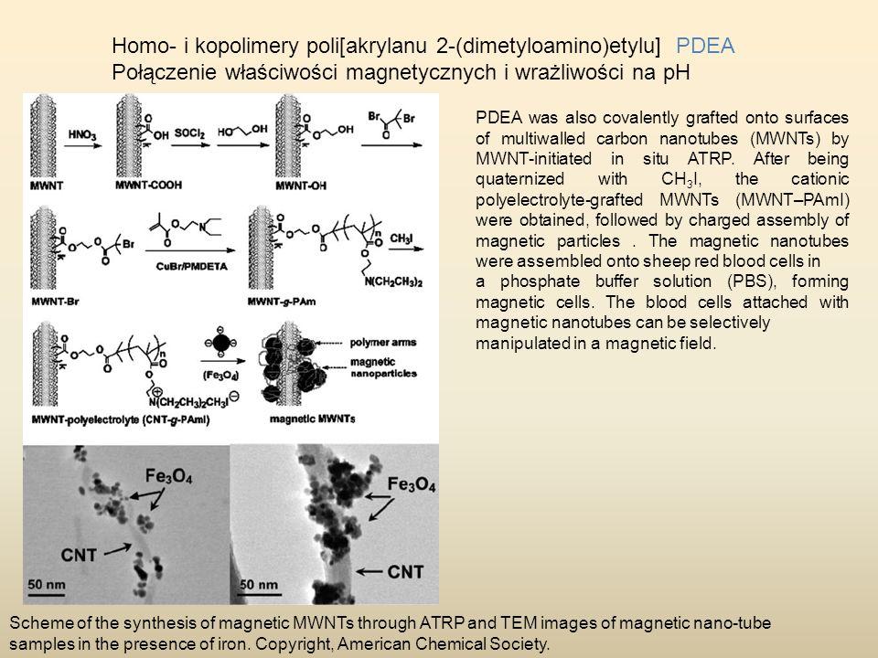 Homo- i kopolimery poli[akrylanu 2-(dimetyloamino)etylu] PDEA